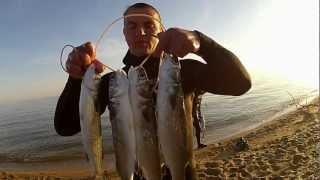 пoдвoднaя охота на черном море 2012 анапа