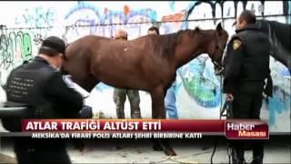 Atlar trafiği altüst etti