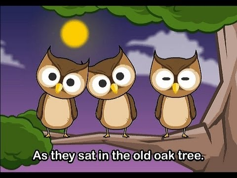 Muffin Songs - One Little Owl   | nursery rhymes & children songs with lyric