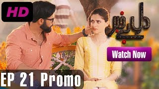 Dil e Bekhabar - Episode 21 Promo | A Plus ᴴᴰ Drama | Arij Fatima, Adeel Chaudhary, Noor Hassan