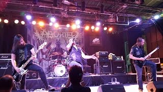 Aborted live in Egypt 2015
