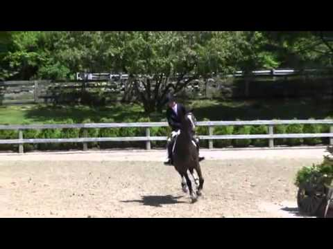 Video of U2 ridden by FRANCESCA BOLFO from ShowNet!