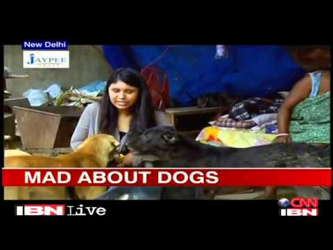 Delhi  Ragpicker Becomes Saviour Of Stray Dogs