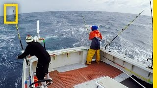 Two Bites for the Pin Wheel | Wicked Tuna: Outer Banks