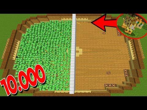 10.000 CREEPERS VS 1 OCELOT (MINECRAFT MOONKASE) thumbnail