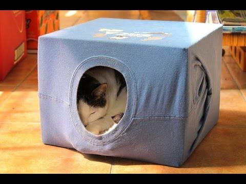 Кошке домик из коробок своими руками 9