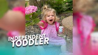 Nick's Independent Toddler