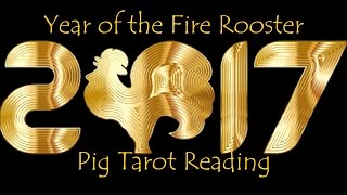Pig 2017 Chinese New Year Reading - Born 1947, 1959, 1971, 1983, 1995, 2007 - Awareness of Change