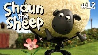 Shaun the Sheep - Shirley Whirley S2E12 (DVDRip XvID)HD