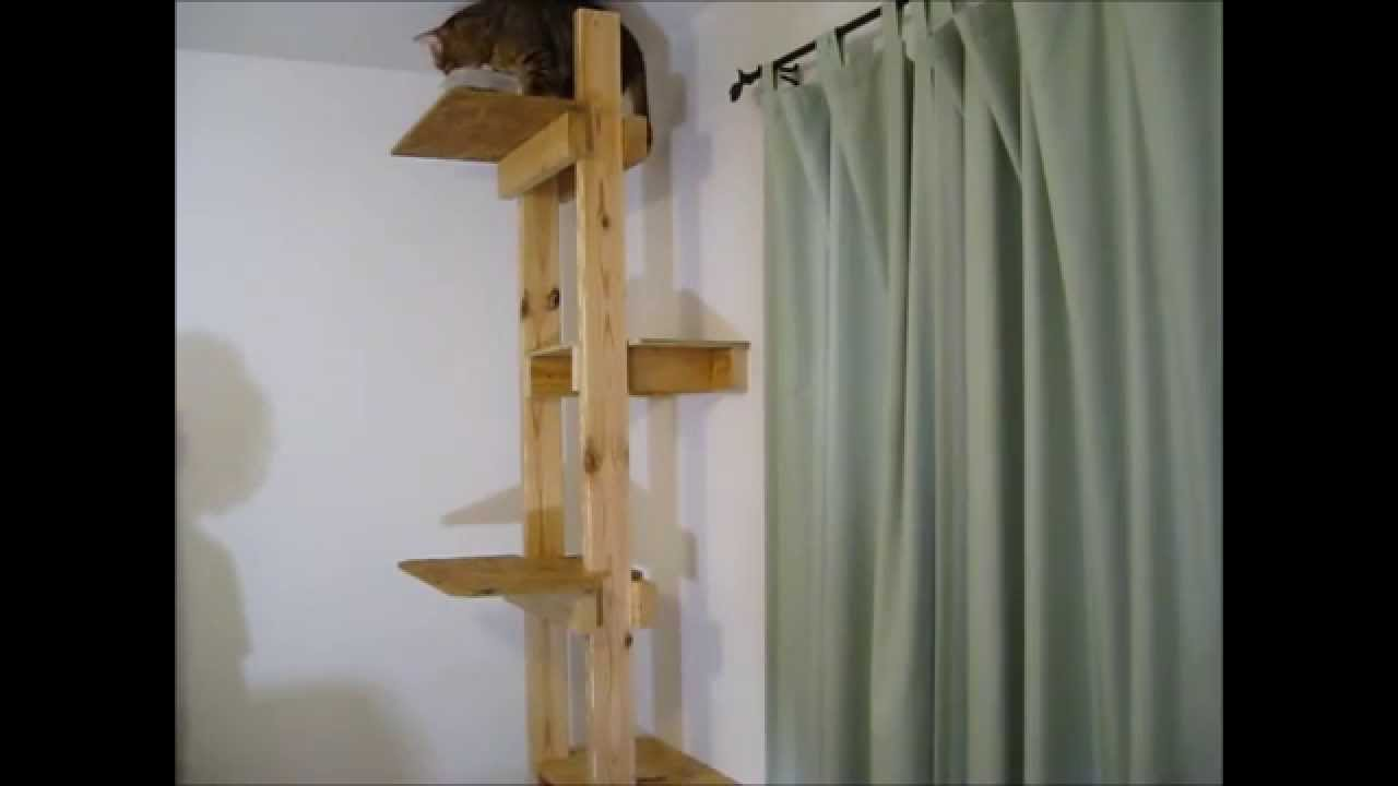 How to build a cat tree or ladder youtube for How to make a cat tower