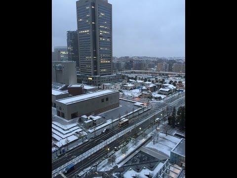 Snow in Yokohama January 18th 2016 雪の日横浜で
