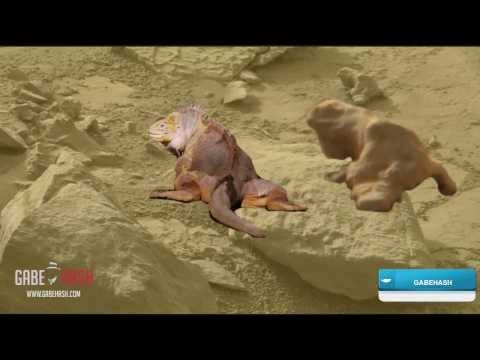CURIOSITY MARS: ¿IGUANA EN MARTE? 9 DE NOVIEMBRE 2013