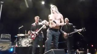Watch Iggy Pop Funtime video