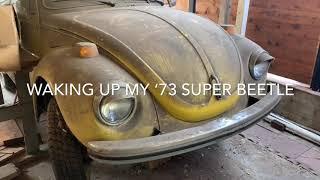 1973 VW Super Beetle Restoration: Episode 1 Wake up