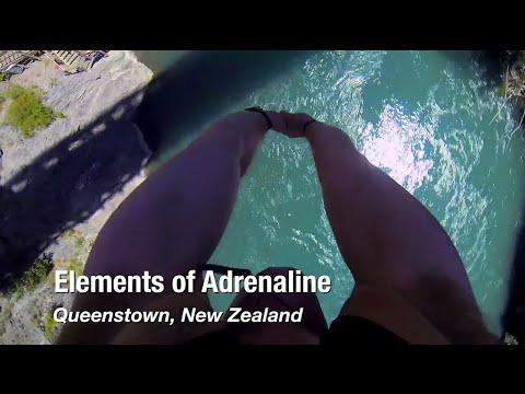Elements of Adrenaline