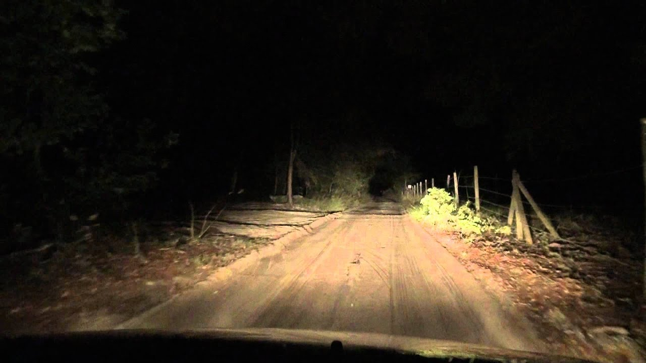 dirt scary road to haunted woods in florida somewhere