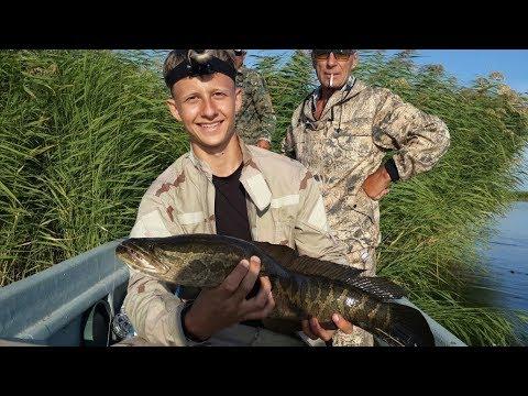 когда откроется рыбалка на балхаше