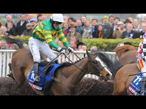 The Grand National: The Punter