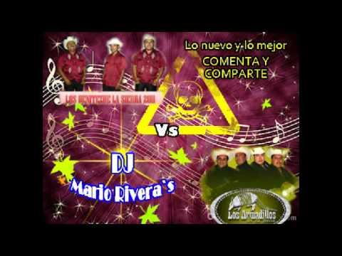Los Armadillos vs los Benitez 2012 (lo nuevo)