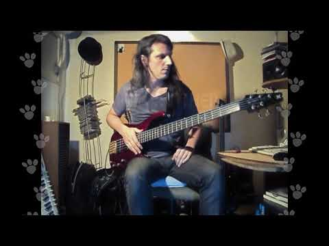 The Pink Panther - Tapping Bass  - La Pantera Rosa