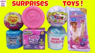 Toy Surprises Num Noms DIPPERS Wild Style Shopkins 9 Mystery Surprizamals 6 Disney  Fun Kids