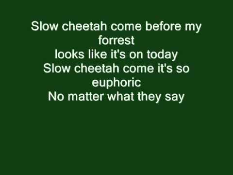 Slow Cheetah Guitar Pro