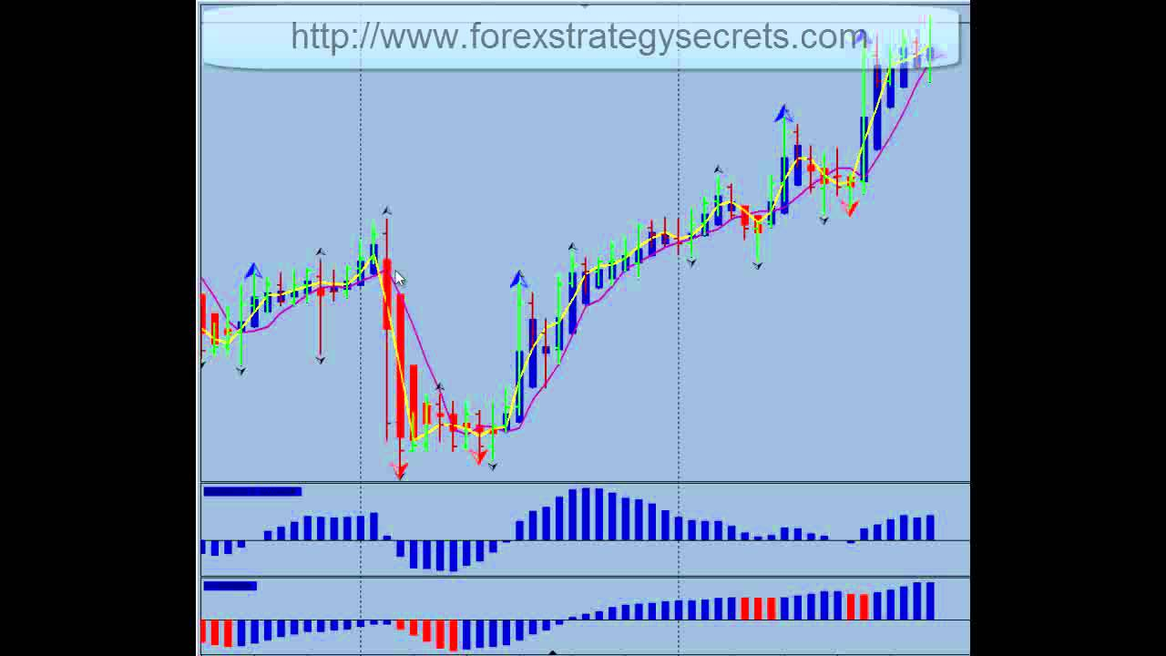 Success in forex