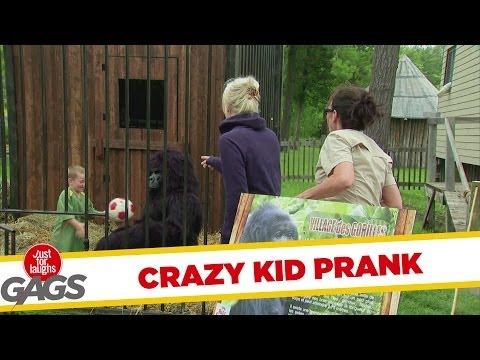 Crazy Kid Sneaks In Gorilla Cage