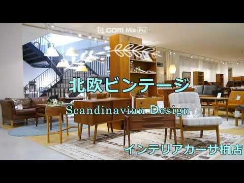2Fビンテージフロア 散歩【動画】