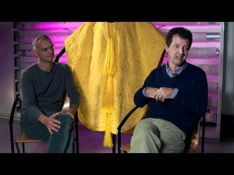 Simon Peers and Nicholas Godley discuss Golden Spider Silk