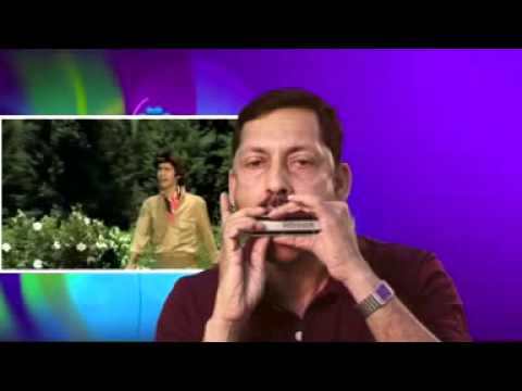 DEKHO MAINE DEKHA HAI ON HARMONICA