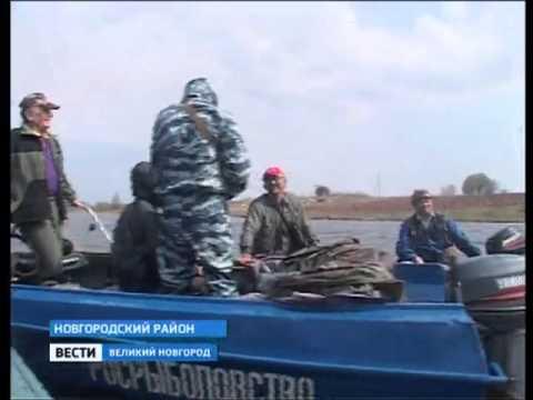 Вести Великий Новгород.Рыбнадзор с рыбаками любителями(novfishing.ru)