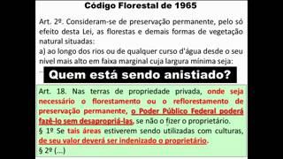 Desmistificação da anistia imputada ao Projeto do novo Código Florestal