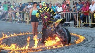 Paulo Martinho | Moto Freestyle | 2014 | BOTICAS