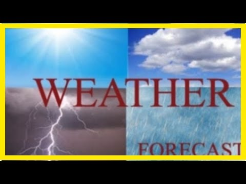 Breaking News | Showers, thundershowers expected today