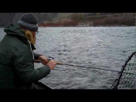 Good Winter Fishin' for Steelhead on the Salmon River in Idaho