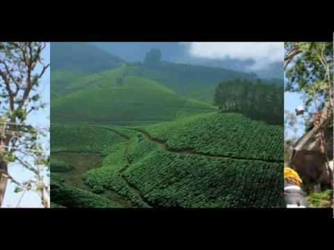 India Kerala Wilderness South India Package Holidays Travel Guide Travel To Care