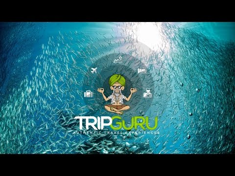 TRIP GURU Best Activities – PADI Advanced Open Water Diver, Moalboal, Philippines