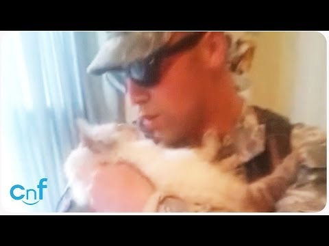 Soldier Welcomed Home by Excited Cat