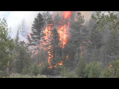 Colorado wildfires force 11000 from their homes - Worldnews.