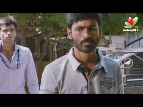 Velai Illa Pattathari (VIP) Box Office Collection | Dhanush, Anirudh, Amala Paul | Cinema News