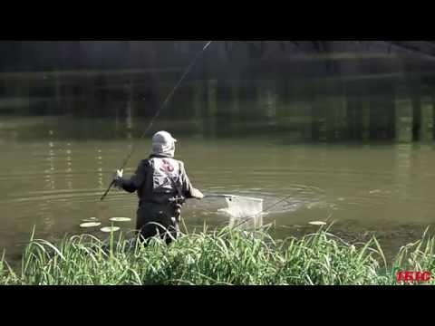 ибис рыбалка видео