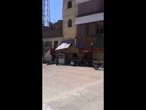 On a cal�che from Karnak to Luxor, Egypt