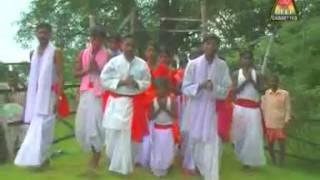 Sarna video