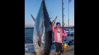 Làm thịt con cá ngừ khổng lồ 200 Kg ở Nhật Bản
