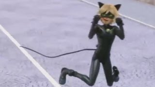 CAT NOIR MEOWS 2
