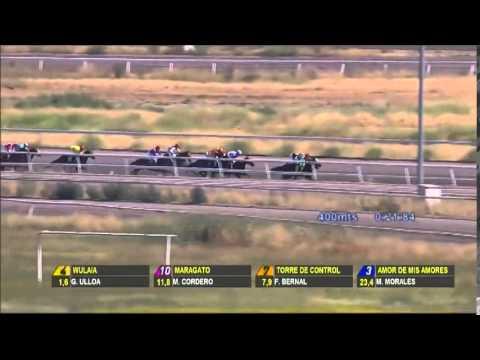 Vidéo de la course PMU PREMIO VALLIER H.