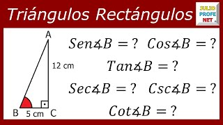 Funciones trigonometricas de un triangulo rectangulo problemas resueltos