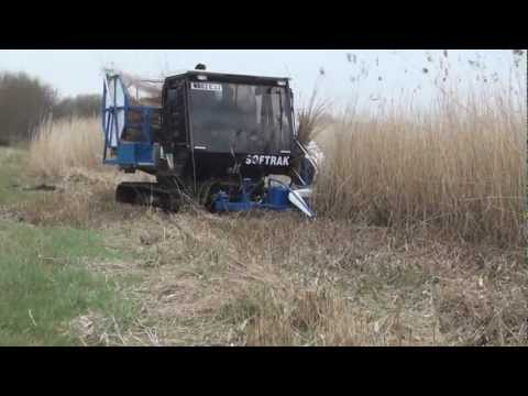 Reed Harvesting Shapwick Fen inc 3D