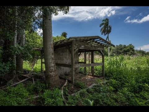 Urban Exploring old Gatorland Park in Florida by Jason Lanier using the Sony A7R, RX10, and VG900